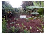 Ada Pohon Durian dan Kelapa