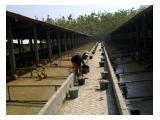 Jual Tanah dan Kandang Multifungsi