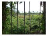 Jual Tanah 17.871 m2 SKGR, Balai Makam Duri Riau cocok u/ developer/investasi