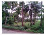 Tanah kosong pinggir jalan cocok untuk lahan usaha