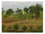Jual / Sewa Tanah di jalan raya 2,6 ha dekat Universitas Diponegoro, Tembalang, Semarang