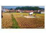 Jual Tanah Sawah Produktif di Kutawaringin Bandung - Girik